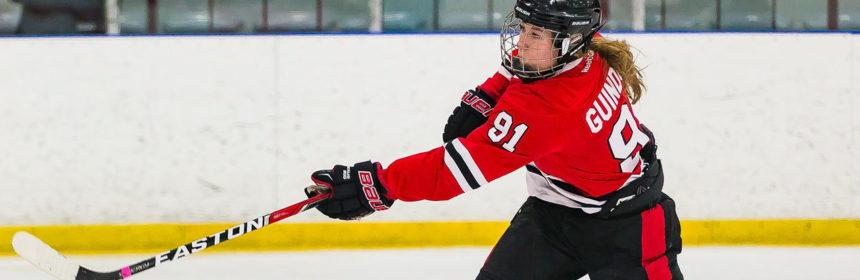sswedishhockey_provided_web-e1504027472868-860x280